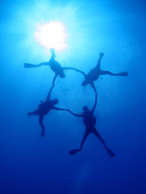 本格的なハワイの体験ダイビング