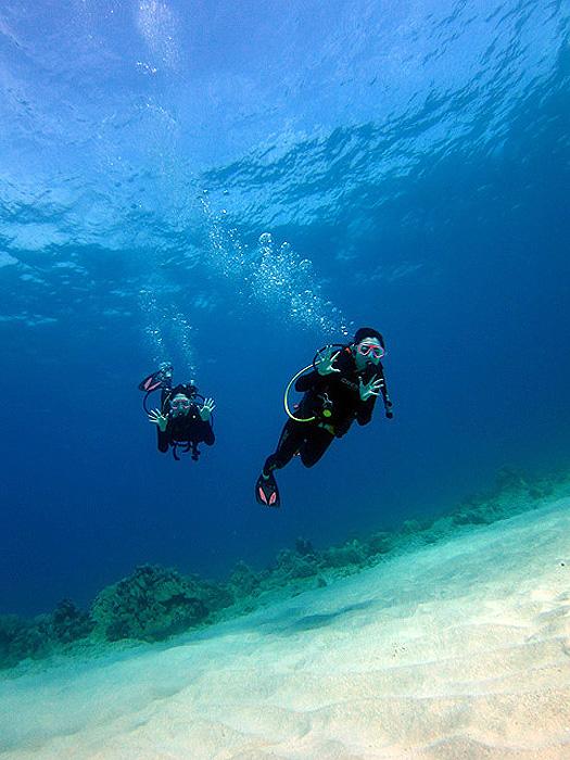 ハワイの真っ青な海で体験ダイビング