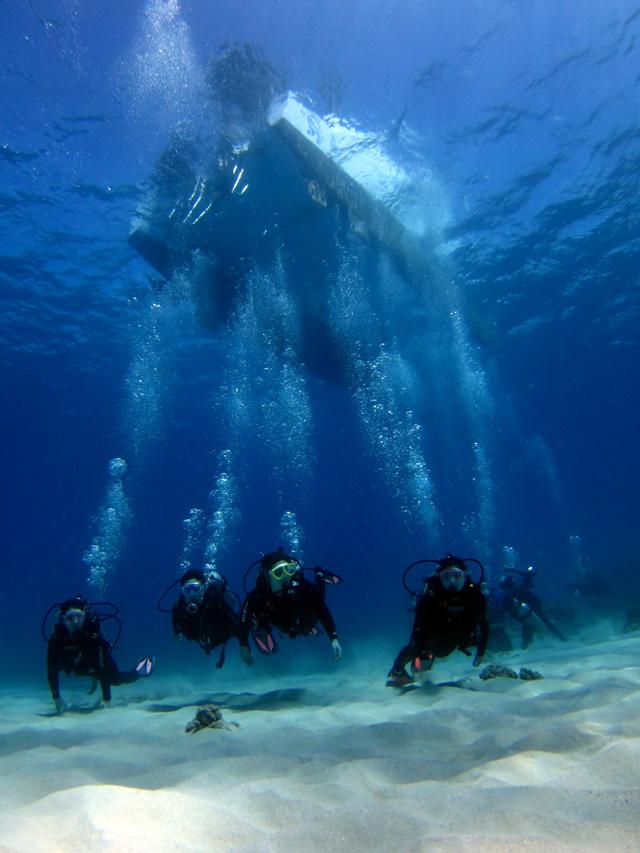 透き通ったハワイの海で体験ダイビング