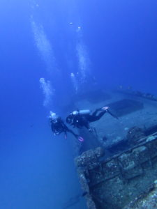 巨大な沈船シータイガー