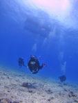 ハワイの真っ青な水中