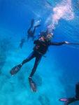 キラキラで真っ青なハワイのダイビング